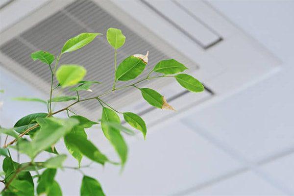 vvs vesterbro ventilation sundt indeklima